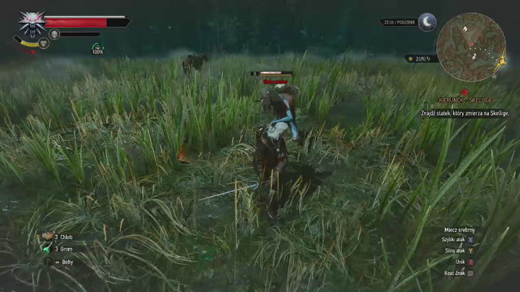 DWilkuu playing The Witcher 3: Wild Hunt - Game of the Year Edition